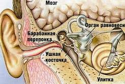Как лечить отит наружного и среднего уха. Симптомы отита
